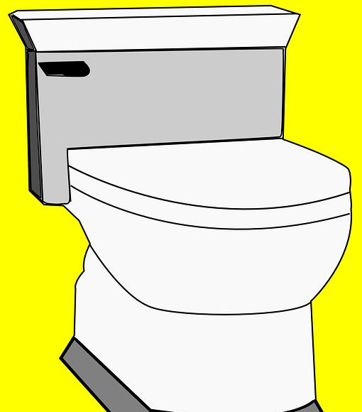 Καθαρίζουμε WC τουαλέτα οικολογικά